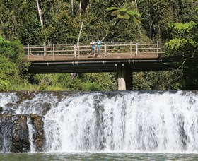 Malanda Falls Conservation Park - Taree Accommodation