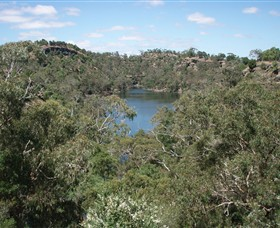 Mount Eccles National Park - Taree Accommodation