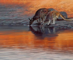 Steve Morvell Wildlife Art - Taree Accommodation