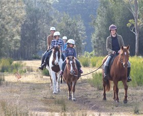 Horse Riding at Oaks Ranch and Country Club - Taree Accommodation