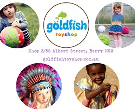 Goldfish Toy Shop - Taree Accommodation