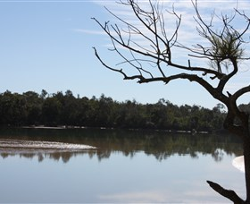 North Coast Holiday Parks Boambee Creek Reserve - Taree Accommodation
