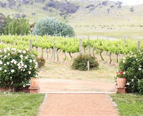 Brindabella Hills Winery - Taree Accommodation