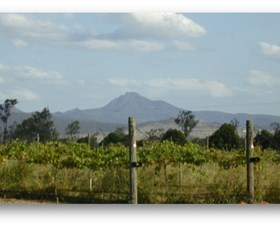 Ironbark Ridge Vineyard - Taree Accommodation