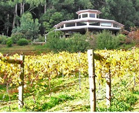 Peveril Vineyard/Beechy Berries - Taree Accommodation