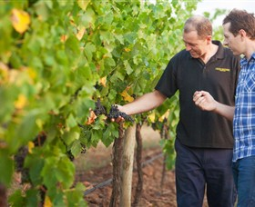 Fratin Brothers Vineyard - Taree Accommodation