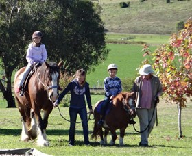 Bathurst Farm Experience - Taree Accommodation