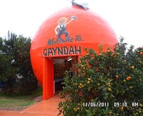 Gayndahs Big Orange - Taree Accommodation
