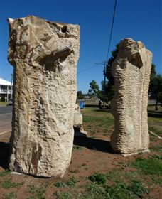 Fossilised Forrest Sculptures - Taree Accommodation