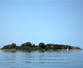 Hope Islands National Park - Taree Accommodation