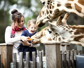 Taronga Western Plains Zoo Dubbo - Taree Accommodation