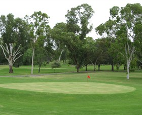 Moree Golf Club - Taree Accommodation