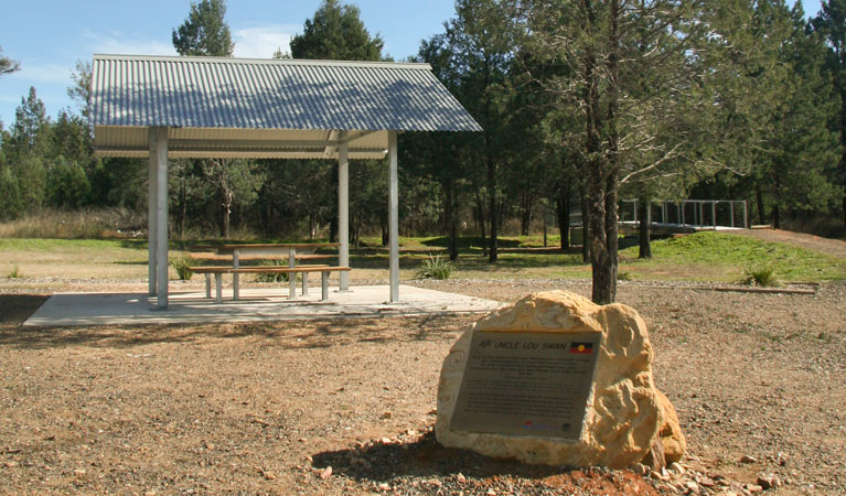 Terry Hie Hie picnic area - Taree Accommodation