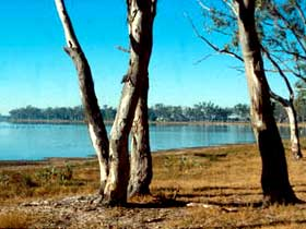 Lake Broadwater Conservation Park - Taree Accommodation