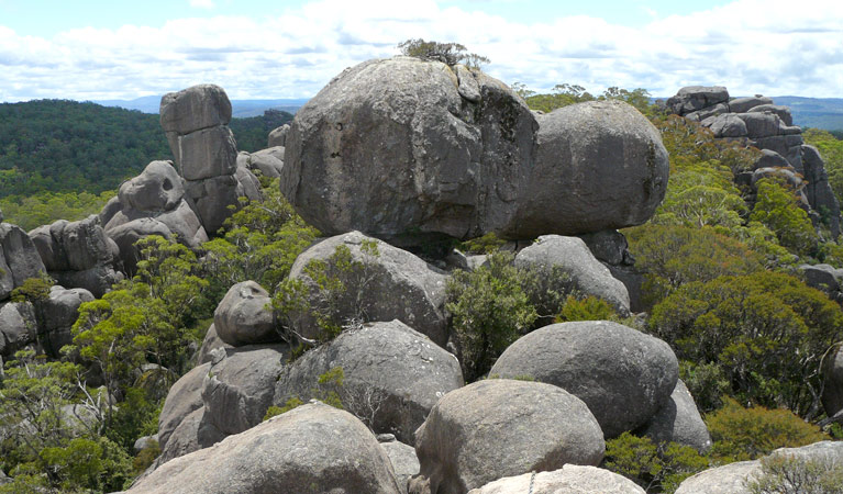 Cathedral Rock National Park - Taree Accommodation
