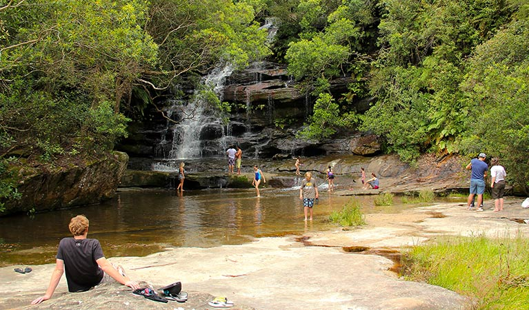 Somersby Falls picnic area - Taree Accommodation