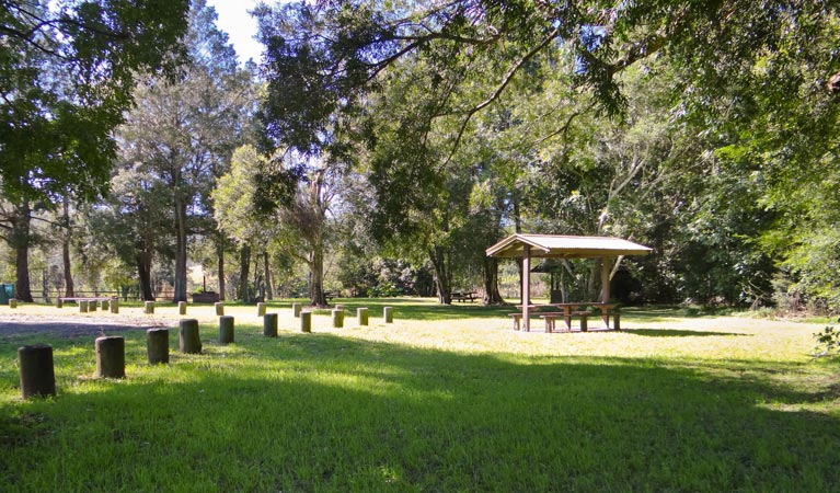 Moore Park picnic area - Taree Accommodation