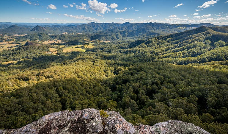 Flat Rock lookout - Taree Accommodation