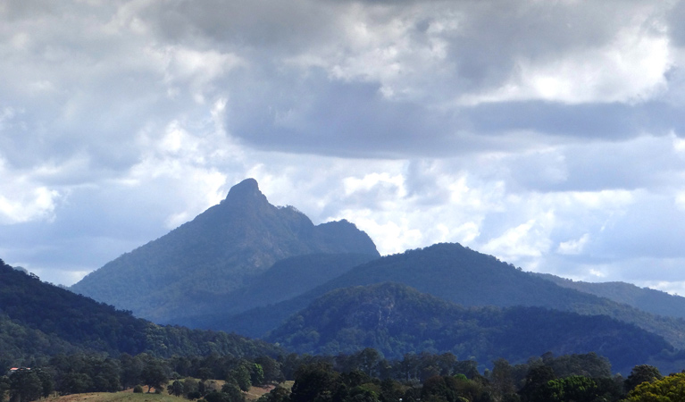 Wollumbin National Park - Taree Accommodation