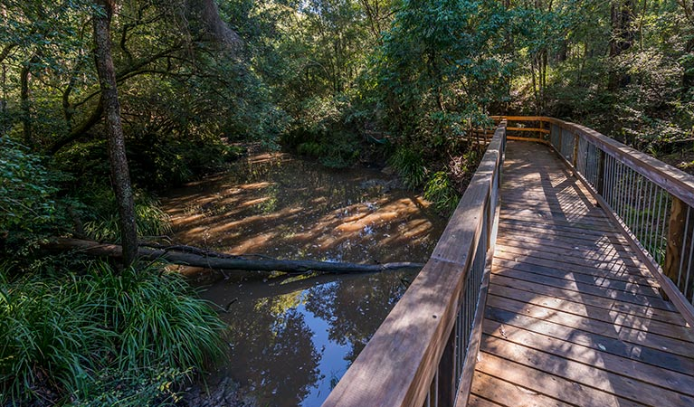 Ms Kellys walking track - Taree Accommodation