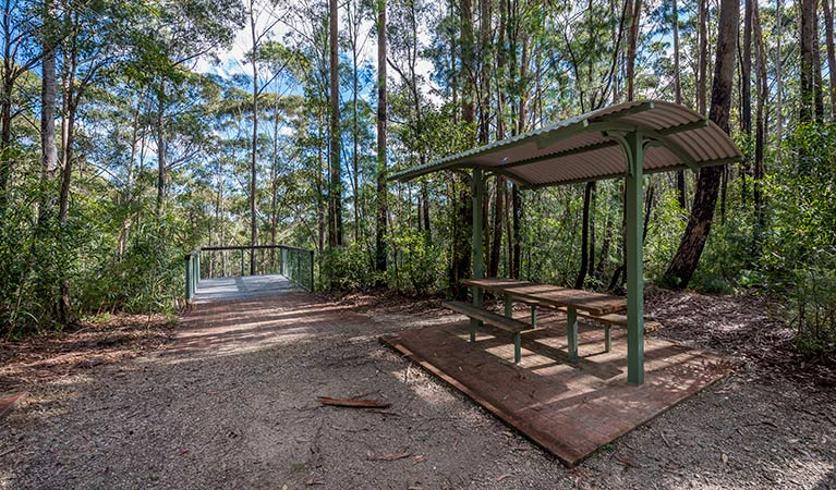 Big Nellie lookout and picnic area - Taree Accommodation