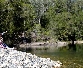 Mount Boss State Forest - Taree Accommodation