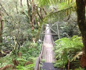 Bemm River Scenic Reserve - Taree Accommodation