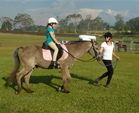 Port Macquarie Horse Riding Centre - Taree Accommodation