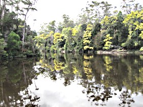 Arthur River - Taree Accommodation
