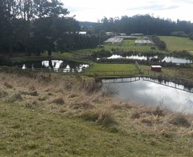 Guide Falls Farm - Taree Accommodation
