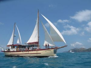 Adventure Cruise Dive and Outer Reef - Whitsundays Sailing Adventures - Taree Accommodation