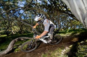 All Terrain Cycles - Taree Accommodation