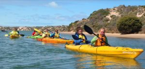 Canoe the Coorong - Taree Accommodation