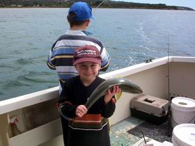 Tory M Fishing Charters - Taree Accommodation