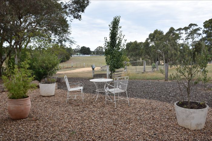 Cygnet Park Country Retreat - Taree Accommodation