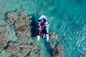 Glass-bottom boat tour with Whitehaven Beach - Taree Accommodation