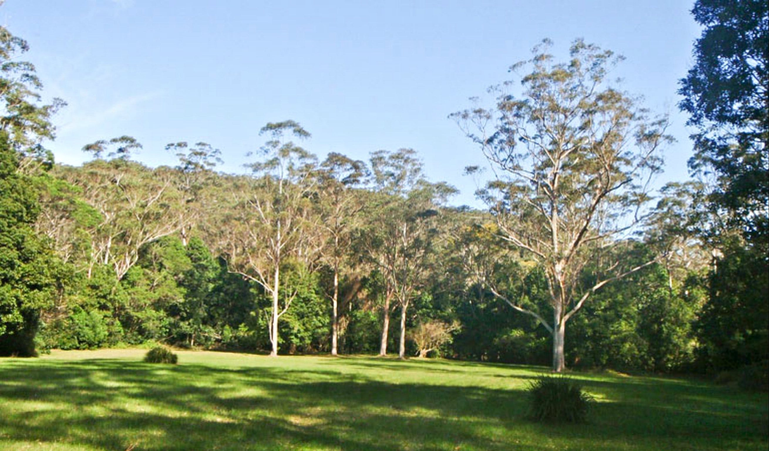 Red Cedar Flat Picnic Area - Taree Accommodation