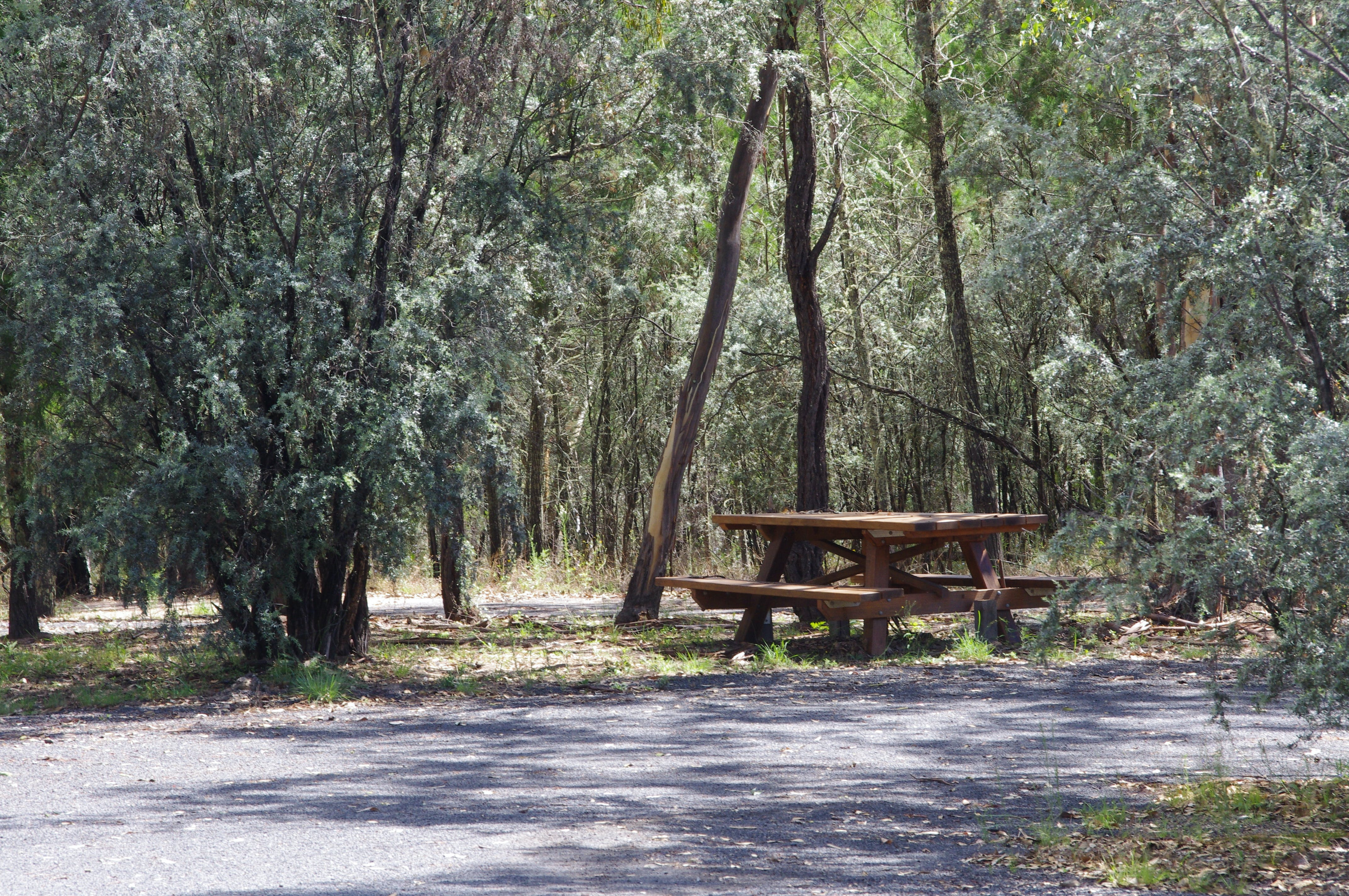 Goonoowigall State Conservation Area - Taree Accommodation