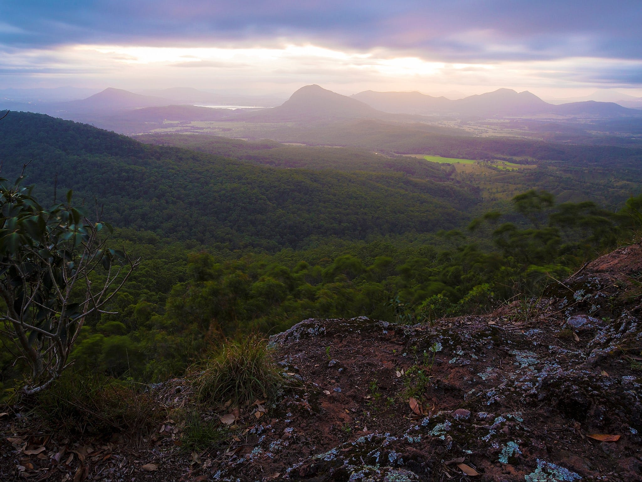 Cunninghams Gap and Spicers Gap Main Range National Park - Taree Accommodation