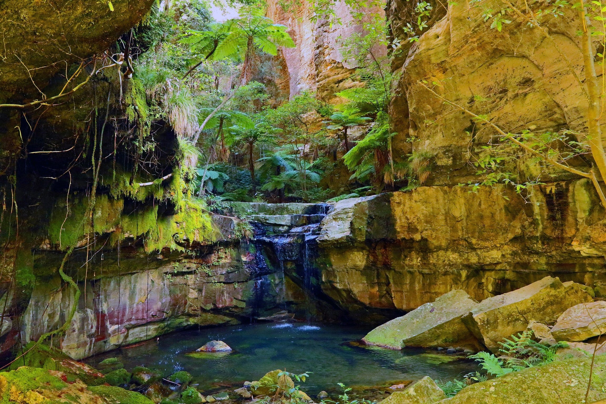 Glimpse of the Outback 5 Day Tour - Roma and Surrounds - Taree Accommodation