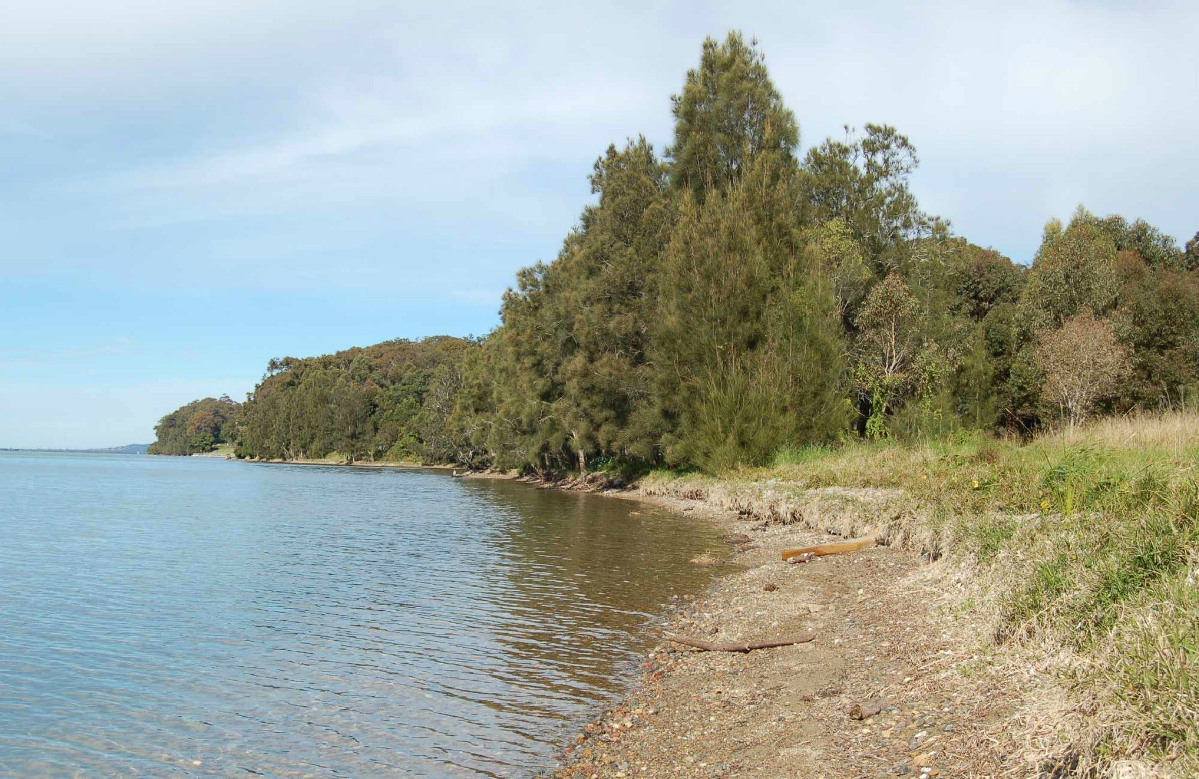 Lake Macquarie State Conservation Area - Taree Accommodation