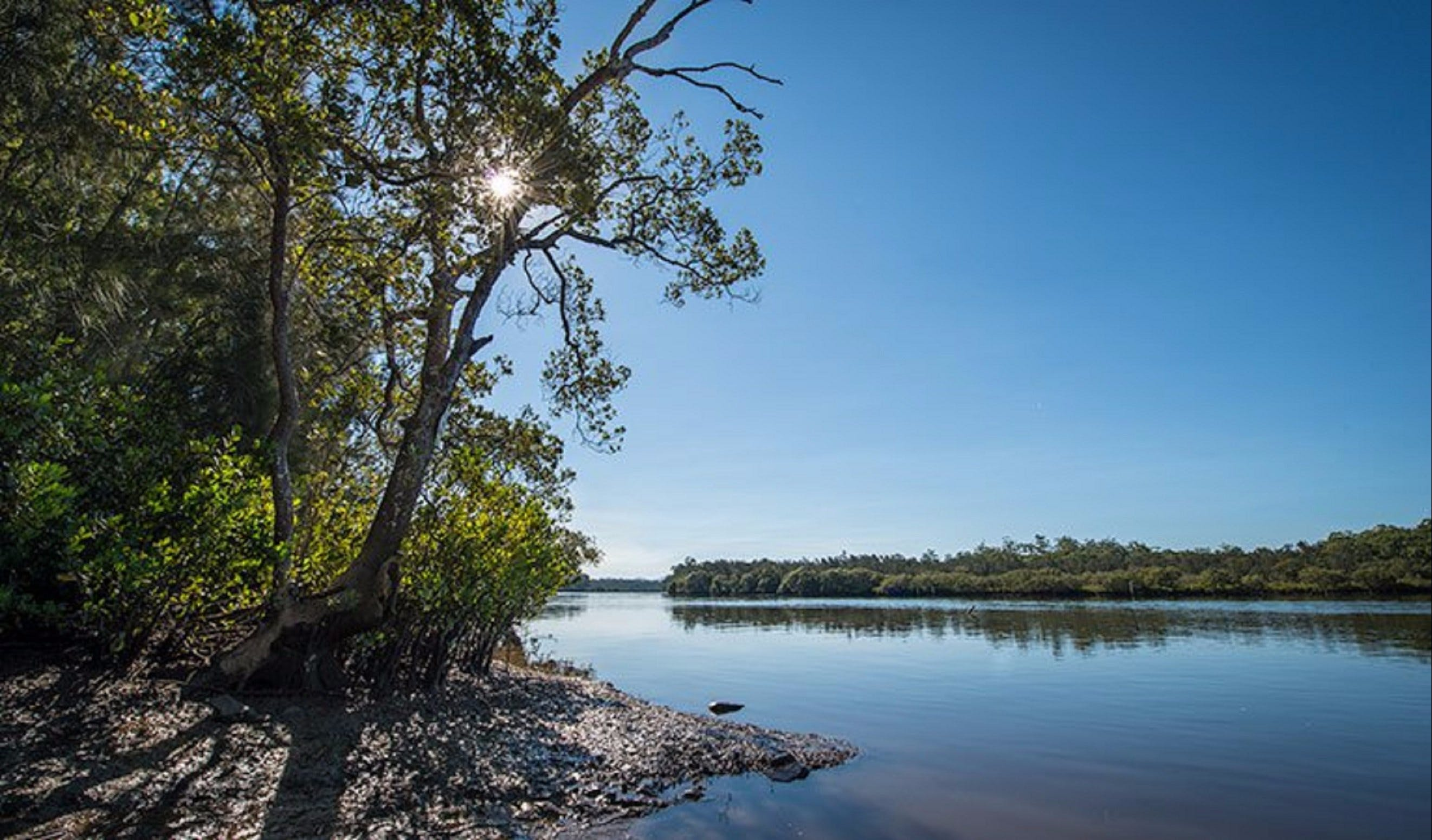 Karuah River National Park and Nature Reserve - Taree Accommodation