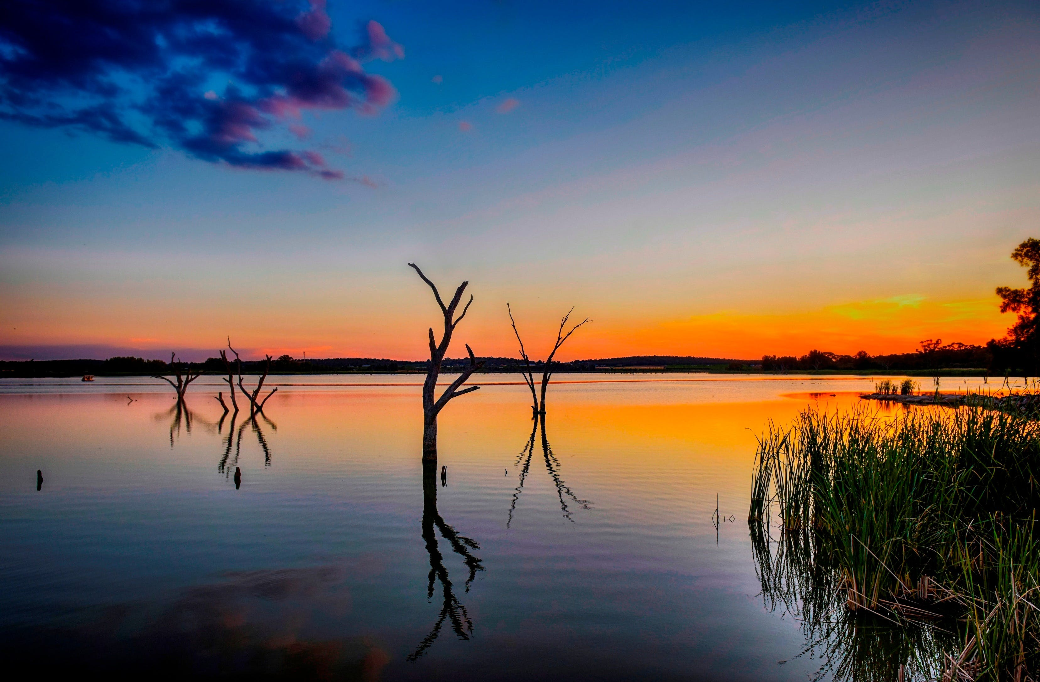 Lake Wyangan - Taree Accommodation
