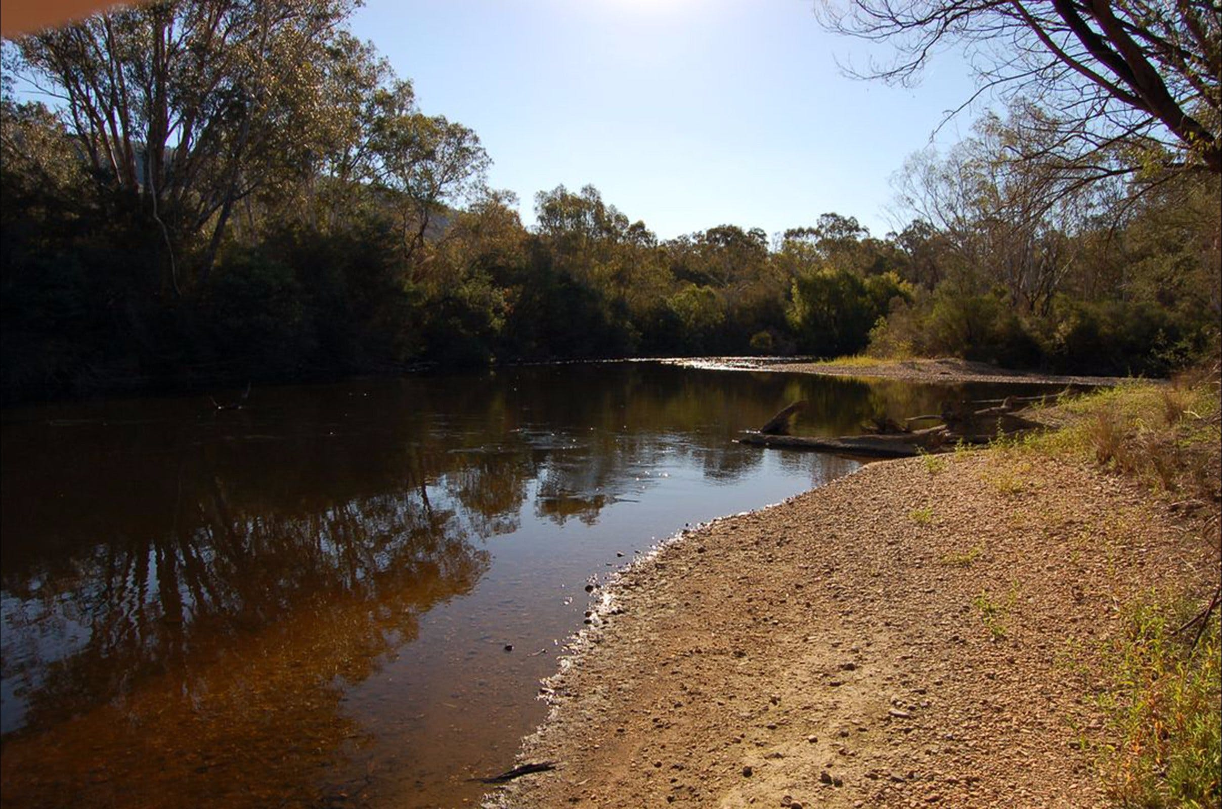 Horseshoe Lagoon Flora and Fauna Reserve - Taree Accommodation