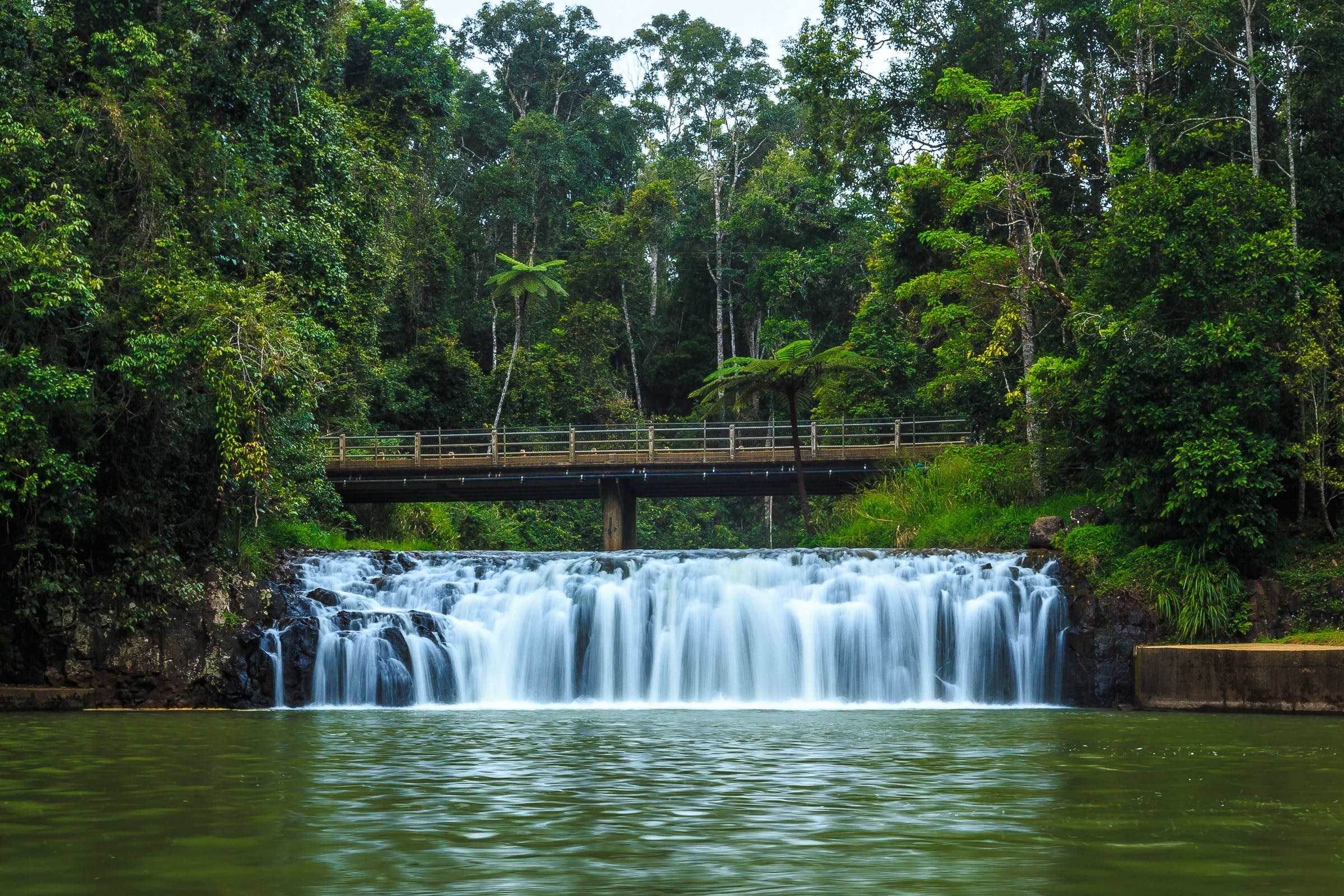 Malanda Falls - Taree Accommodation