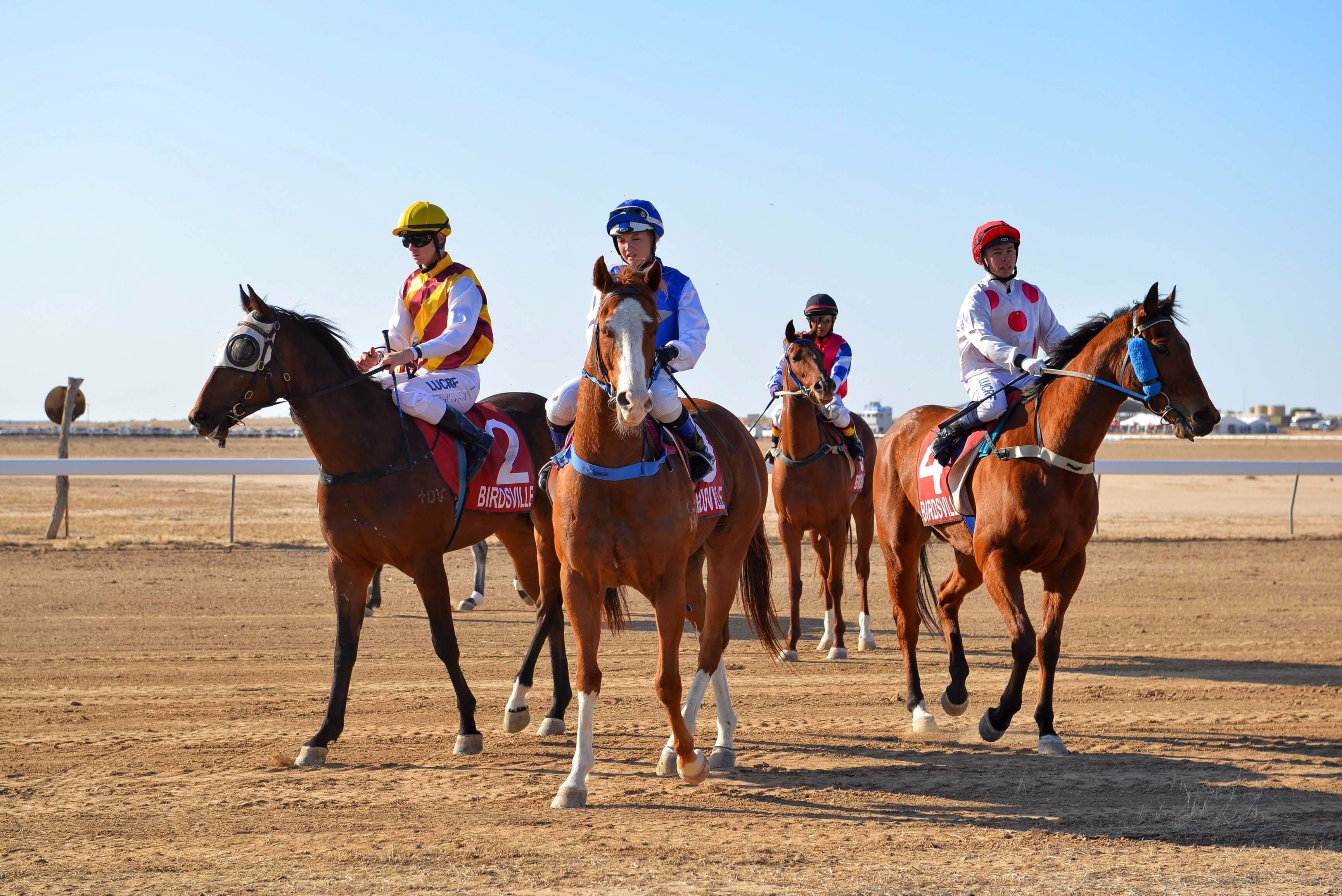 Simpson Desert Racing Carnival Trail - Taree Accommodation