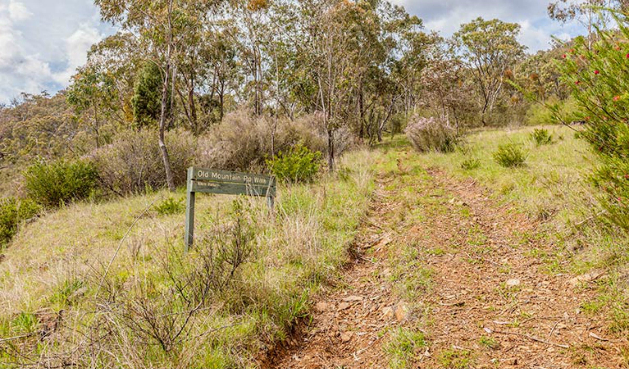 Old Mountain Road Walking Track - Taree Accommodation
