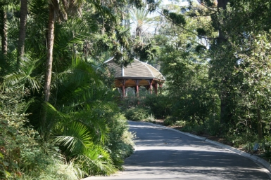 Royal Botanic Gardens Victoria - Taree Accommodation
