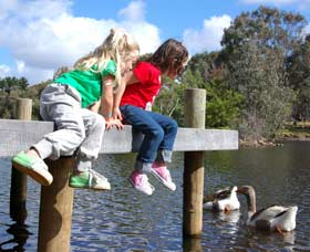 Vasse River and Rotary Park - Taree Accommodation