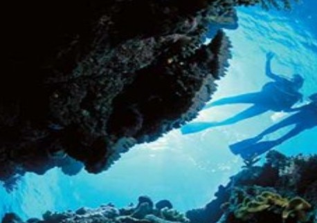 Deep Sea Divers Den - Taree Accommodation